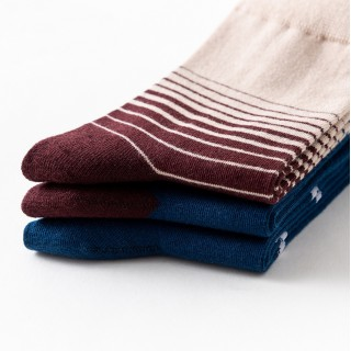 Набор мужских носков «Лебеди», 3 пары