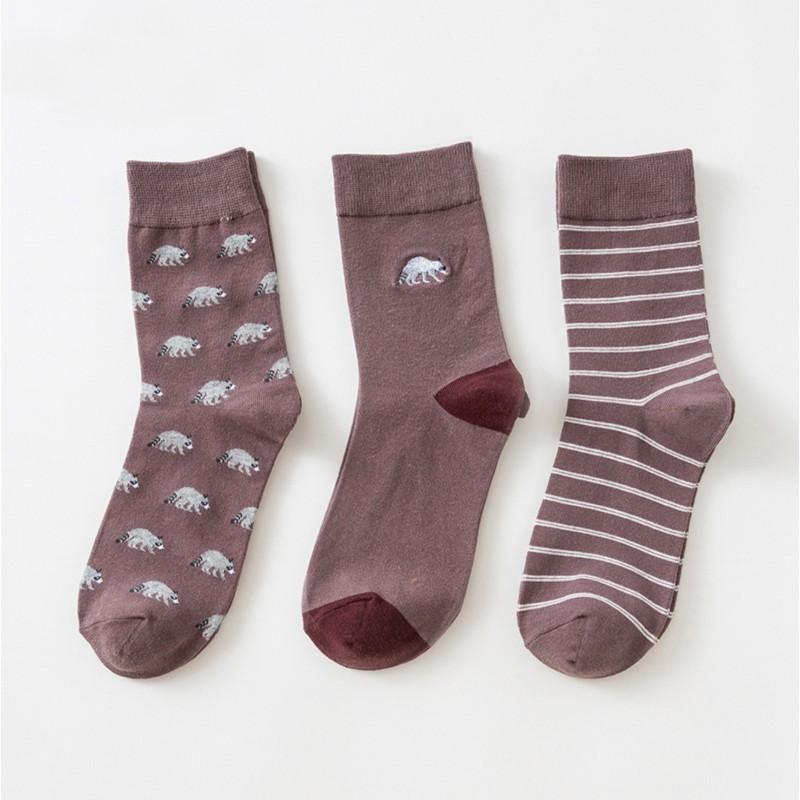 Набор мужских носков «Еноты», 3 пары